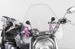 Breast Cancer Custom